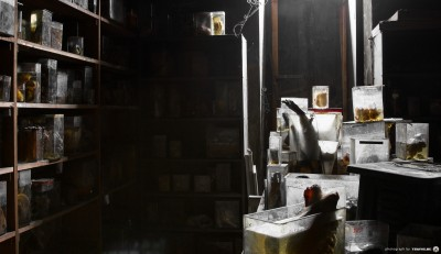 Horror Labs 9